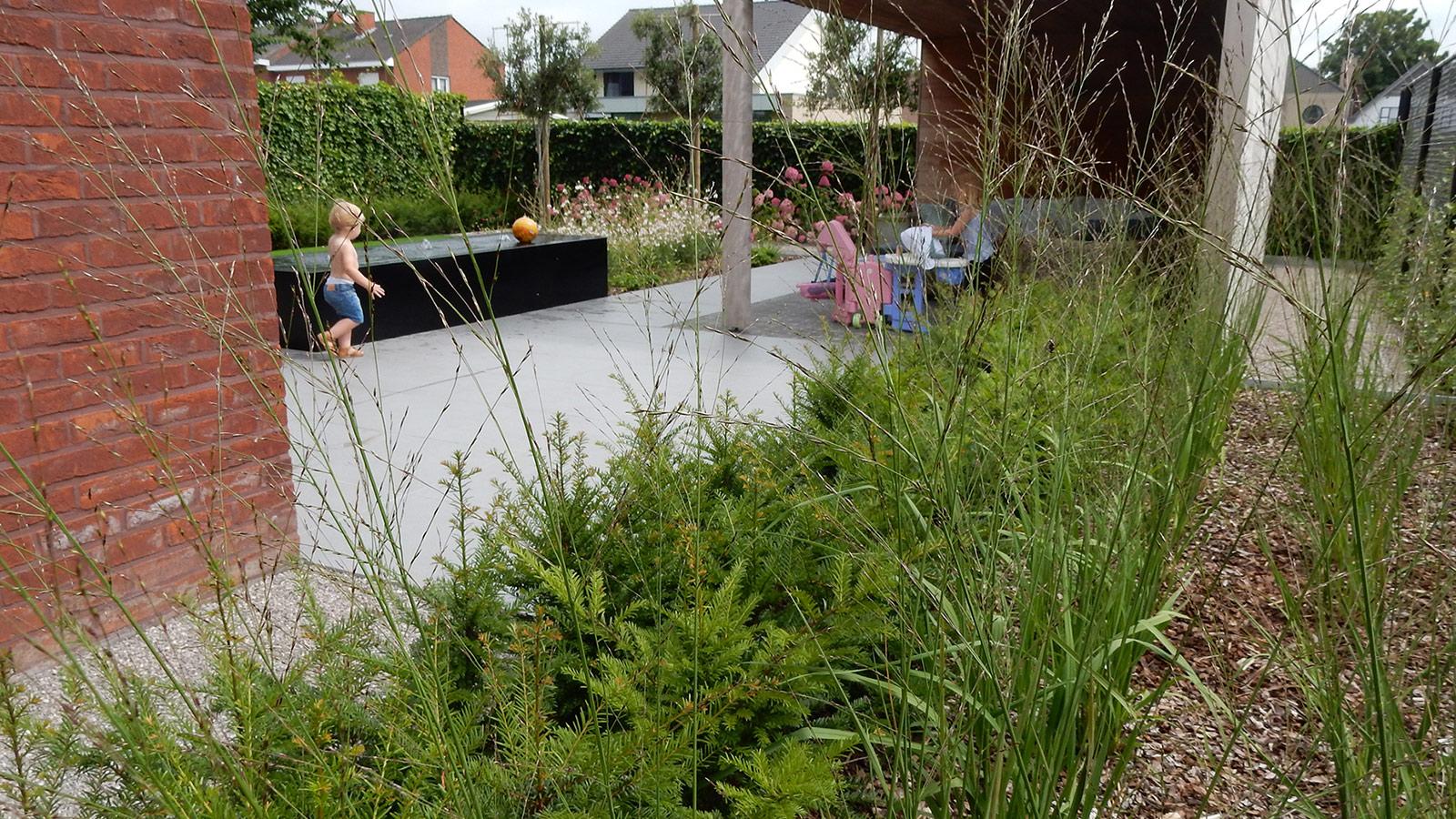 Hedendaags Strakke tuin met weinig onderhoud. CU-25
